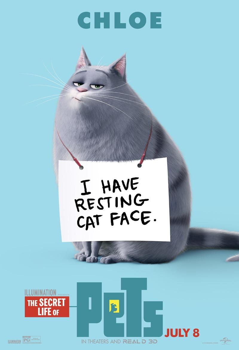 free kittens vancouver wa